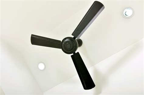 ceiling fans brisbane indoor outdoor ceiling fans