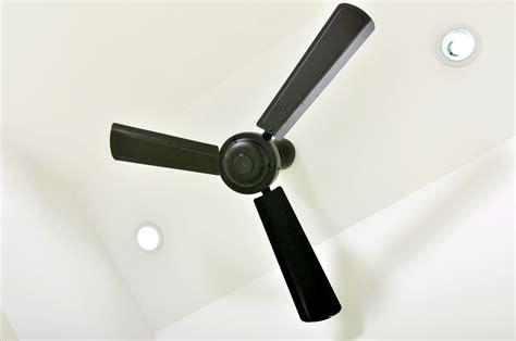 ceiling fans brisbane indoor outdoor ceiling fans