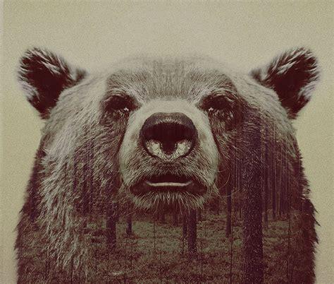 imagenes hipster para perfil de whatsapp animali ritratti in doppia esposizione dal fotografo