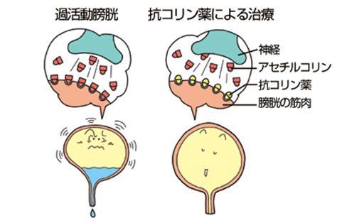 抗コリン薬 anticholinergic japaneseclass.jp