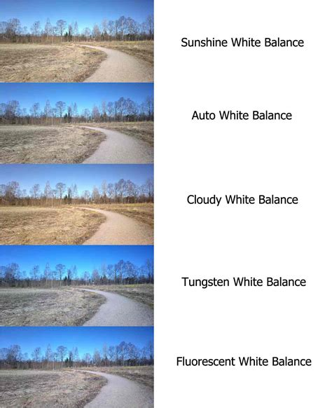 White Balance all you need to about your smartphone s white balance