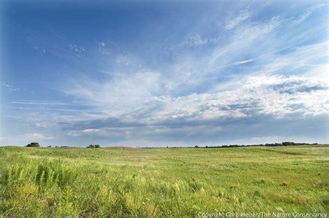 what is a prairie temperate grasslands prairie thinglink
