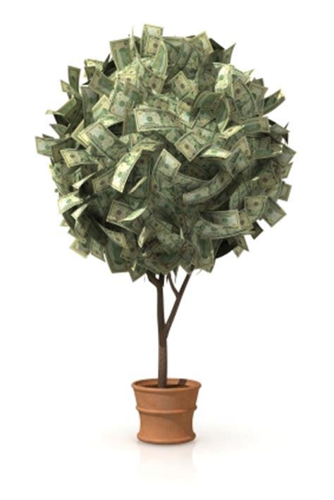 turn dirt into dollars with a microfarm profitable plants