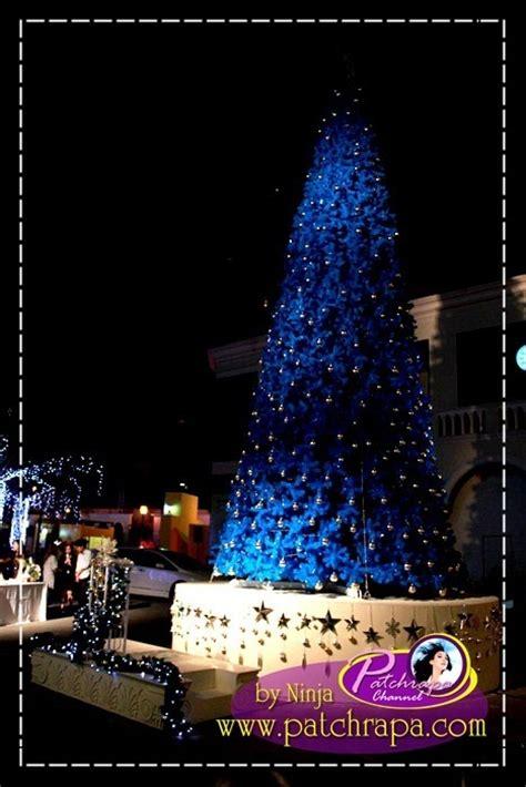 christmas tree lighting ceremony patchrapa photo