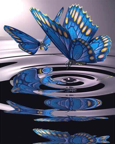 butterflies over water papillon pinterest