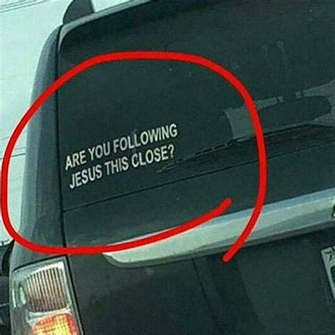 Window Sticker Quotes by Best 25 Funny Car Stickers Ideas On Pinterest Family