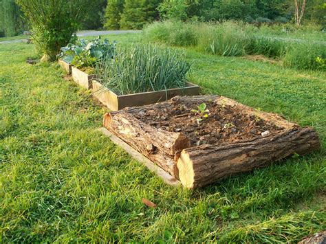 garten beet vegans living the land raised bed garden ideas