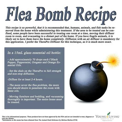 flea bomb diy pest and