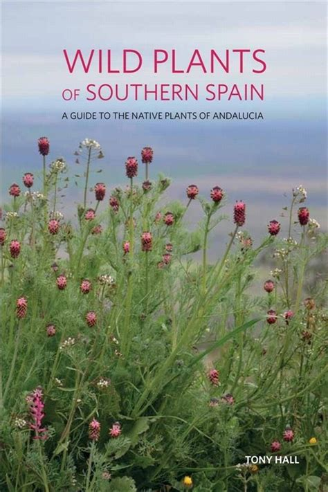 insight guides southern spain books plants of southern spain a guide to the