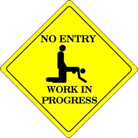 work in progress the reluctant optimist