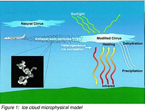 cirrus cloud and climate modifications
