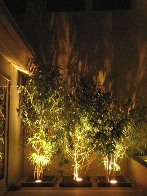 Ideas For Pineapple Outdoor Lights Design 25 Best Ideas About Bamboo Garden On Bamboo Privacy Fence Bamboo Screening And