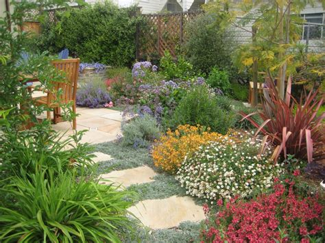 California Drought Tolerant Garden Ideas Drought Tolerant Garden Design