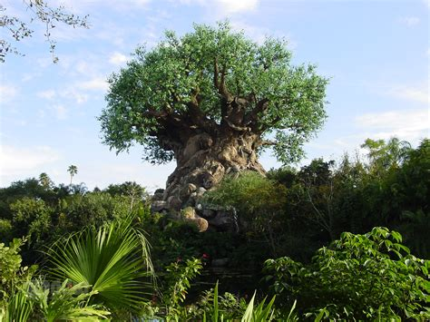 tree of life legs eleven where in walt disney world animal kingdom