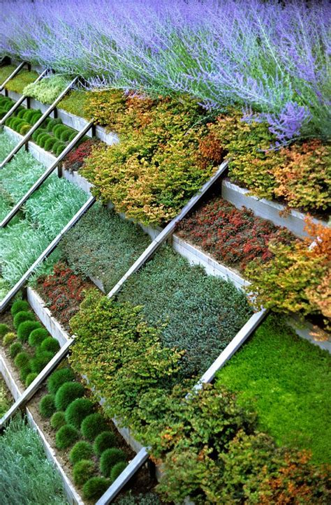 Vegetable Garden On A Slope Great Way To Plant A Slope Great Gardens Ideas