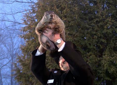Punxsutawney Phil Gobblers Knob by Rving To Gobbler S Knob For Groundhog Day In Punxsutawney