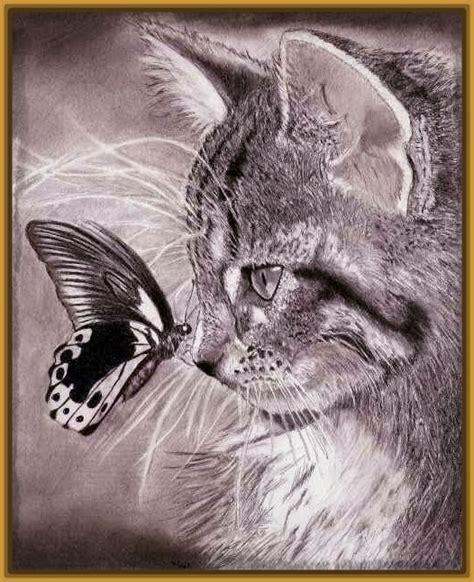 imagenes a lapiz de gatos imagenes de gatos tiernos para dibujar a lapiz