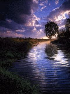 water nature gif animated water stream mobile wallpaper