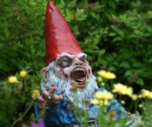 gnome spotted at labor day picnic | mystic investigations