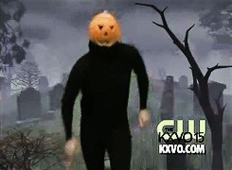 pumpkin gif pumpkin gif find on giphy