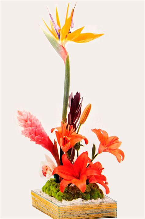 imagenes arreglos florales minimalistas fotos de arreglos florales minimalistas con flores