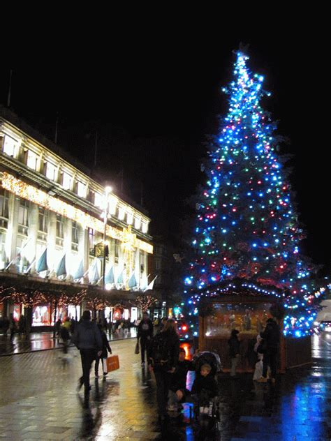 best 28 cheap christmas trees dublin dublin tree 28