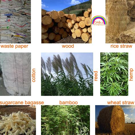 What Materials Are Used To Make Paper - bagasse paper machines used for tissue paper
