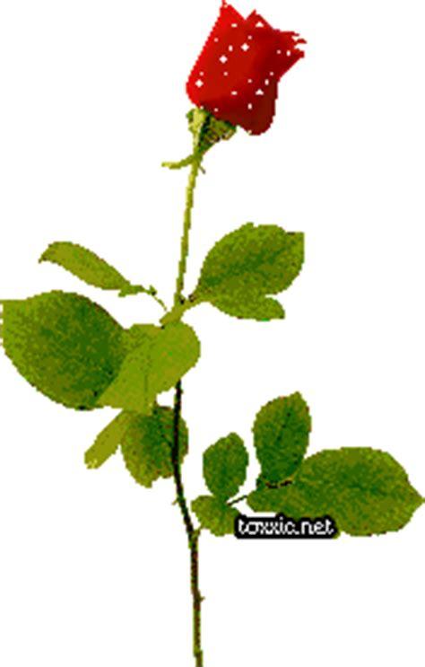 gif animate fiori gratis immagini glitter immagini glitterate cuore e cuori glitter