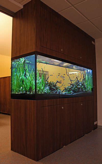 aquarium design in bangladesh aquatic plant central aquascapes pinterest aquatic