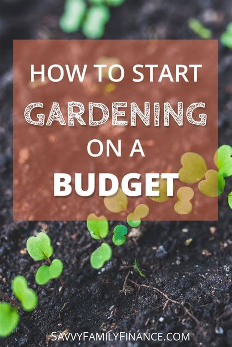 Gardening On A Budget How To Start Gardening On A Budget Savvy Family Finance