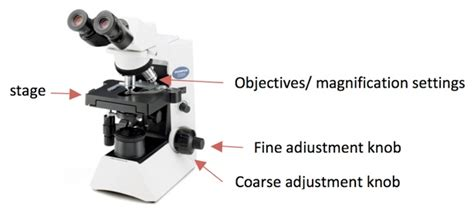 Function Of Coarse Adjustment Knob In Microscope by Course Adjustment Microscope 171 Optics Binoculars