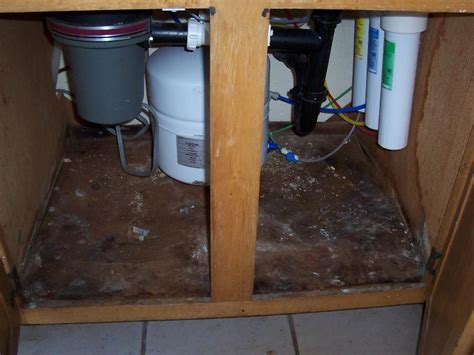 water damaged kitchen cabinets ugly house photos 187 foreclosure