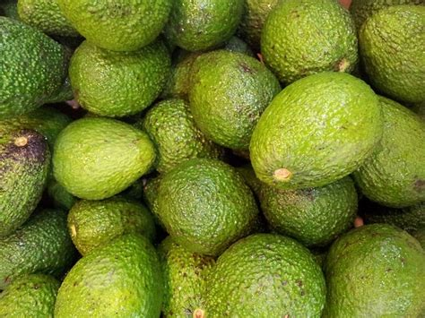 healthy fats for 10 month 7 tips to help you lose 10 pounds in a month up run for