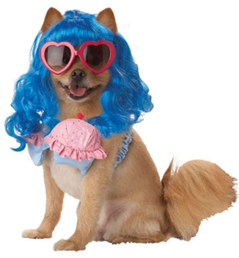 katy perry puppy katy perry costume petenvogue