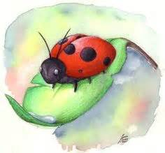 watercolor tattoos ladybug watercolor ladybugs demetriades science