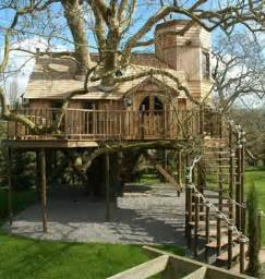 beautiful tree houses damn cool pictures
