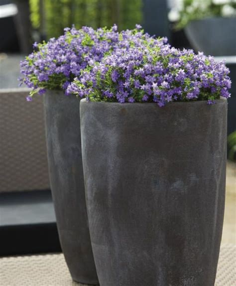 Patio And Balcony Planter Ideas Patio Planter Ideas