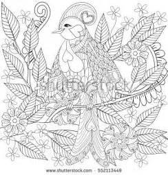 anti stress coloring book australia tropical zentangle bird sitting on stock vector