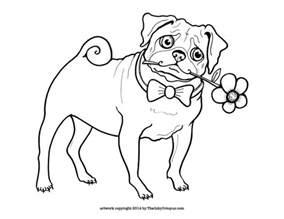 pug coloring pages pug coloring pages coloring pages