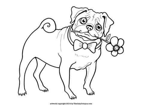 pug color printable pug coloring page the inky octopus