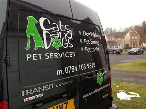 puppy transport service cat and pet services by cats and dogs pet services dundee tayside