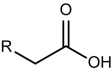 definition generic structure of biography fatty acid definition and chemical structure