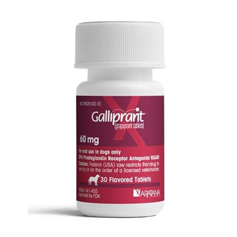 galliprant for dogs purchase galliprant grapiprant flavored tablets for dogs