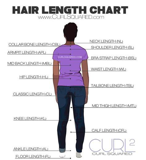 hair length chart the 25 best hair length chart ideas on pinterest length