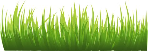 green grass clipart green grass transparent border top turf