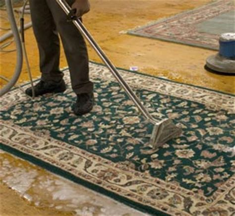 Upholstery Cleaning New York by Carpet Cleaning New York Ny Pros 917 300 1044 Rug