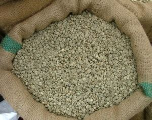 Xo Coffee Robusta gi 225 c 224 ph 234 mất 1 triệu đồng tấn chỉ sau một đ 234 m