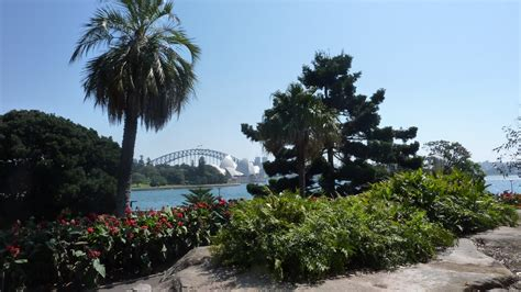 Sydney Royal Botanic Gardens Redefining The Of World S Most Beautiful Botanic Gardens