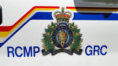 rcmp take kitten to vet after abuse complaint at