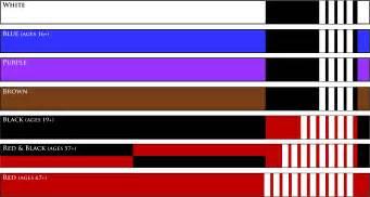 jiu jitsu belt colors belts welcome to elite jiu jitsu of redmond